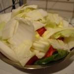 借金している時は自炊で節約がいいです。特に今自炊できてない人は読んで下さい~野菜のコース